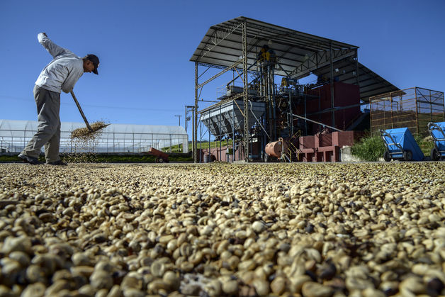 Dry Weather In Brazil Drives Up Coffee Price