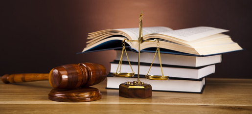 Brief Introduction To Paralegal Career and Why You Should Consider One
