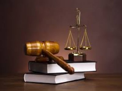What Are The Different Branches Of Law