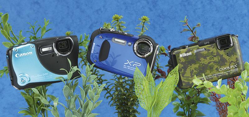 Capture The World Under Water With Under Water Cameras