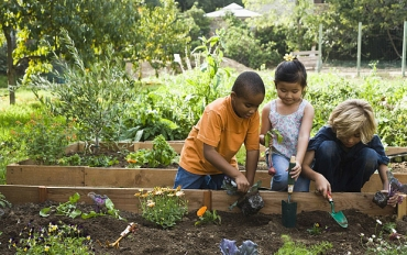Gardening As A Form Of Education For Children