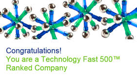For The Second Year In Row Deloitte Technology Fast50(TM) Recognizes HIRO Media