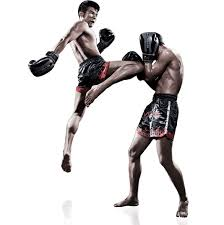 The Online Market Is Full Of Offers For Muay Thai Camp – Here's Why