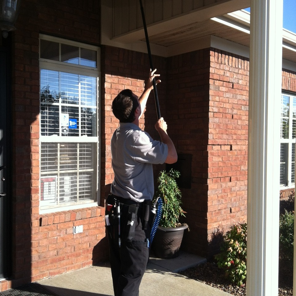 Things To Know About Pest Control In Brentwood