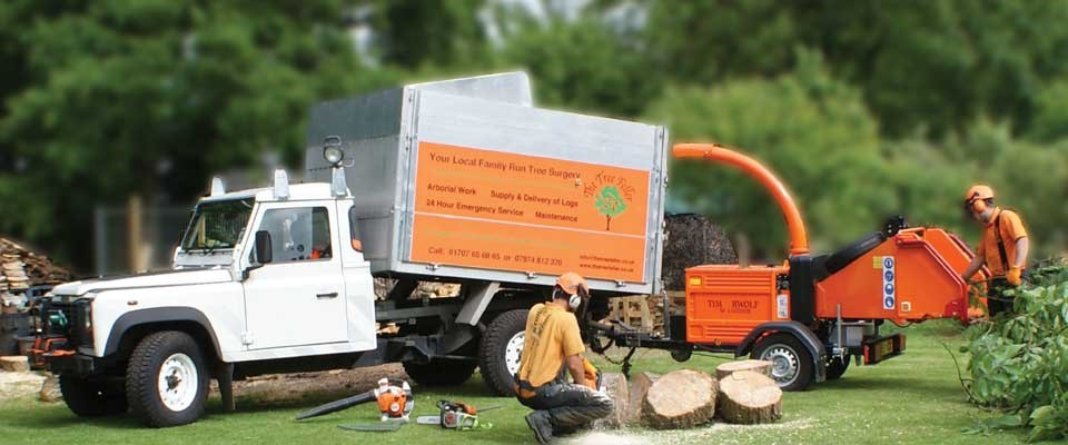 tree surgeons in Romford