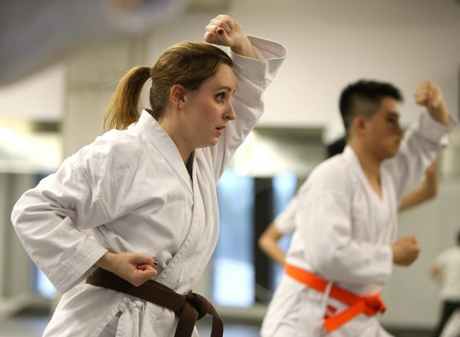 Role Of Martial Arts Schools For An Exhaustive Training