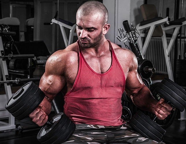 Every Bodybuilder Should Know About Steroids Cycles